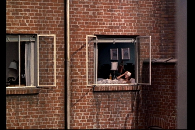 rear-window-mrs-thorbald